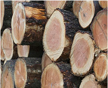 Image of a stack of firewood